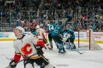190331 Sharks vs Flames (323)